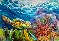 """Sea Turtle"" Betty Ann Medeiros Watercolor"
